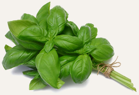 Basil from Fastest/Easiest/Tastiest Thai Beef | meljoulwan.com