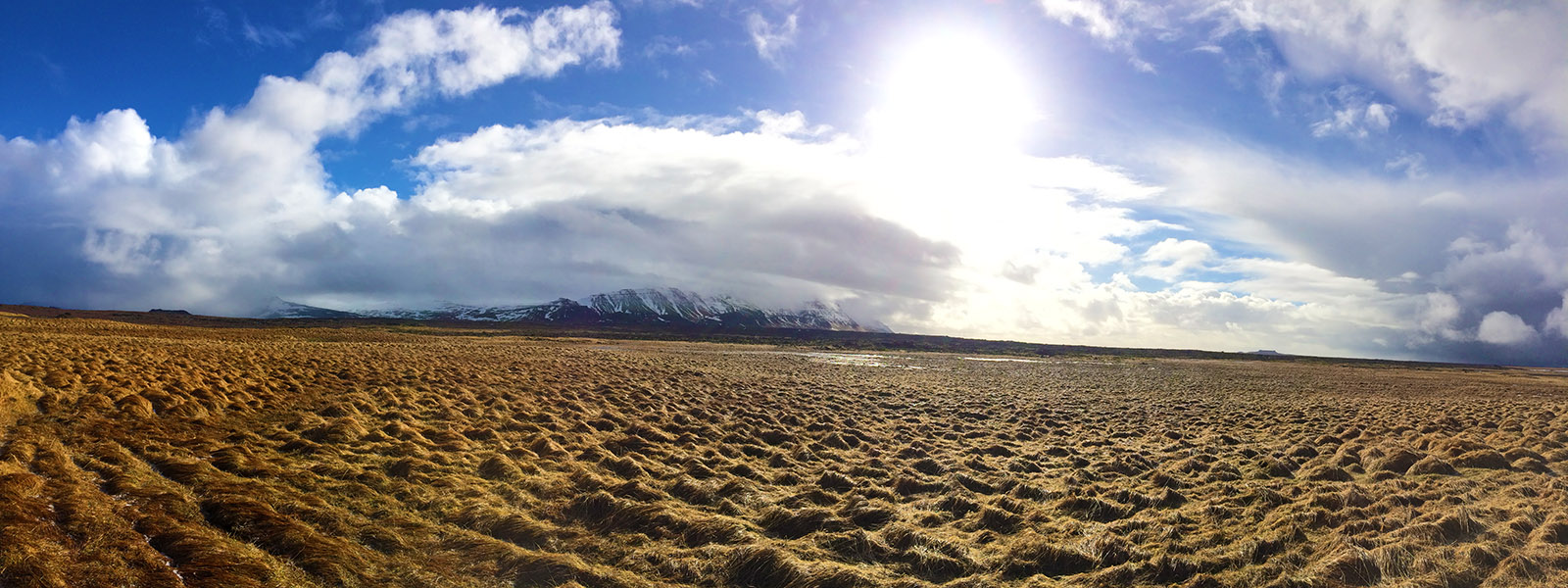 Panorama of sunny marshes outside Reykjavik, Iceland | meljoulwan.com